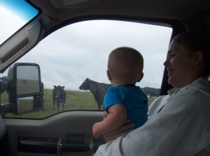 Gunder really liked the cows.